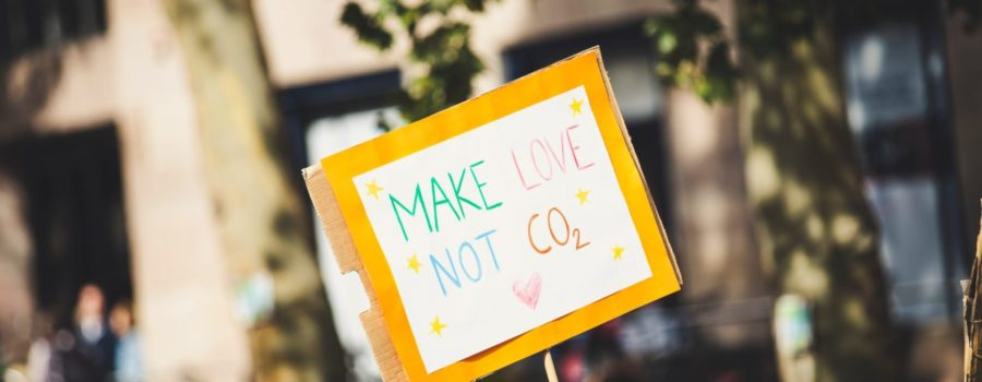 People protesting with a yellow Make Love Not CO2 sign